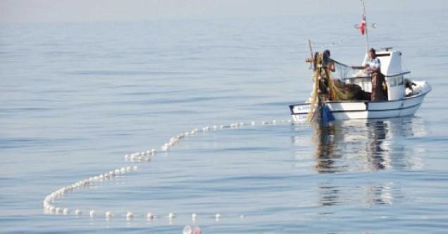 Balıkçıları hayrete düşüren av!