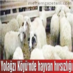 Yolağzı Köyü'nde hayvan hırsızlığı