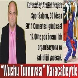 """""""Wushu Turnuvası"""" Karacabey'de"""