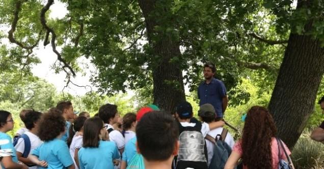 700 öğrenciye Longoz Ormanlarında eğitim verildi