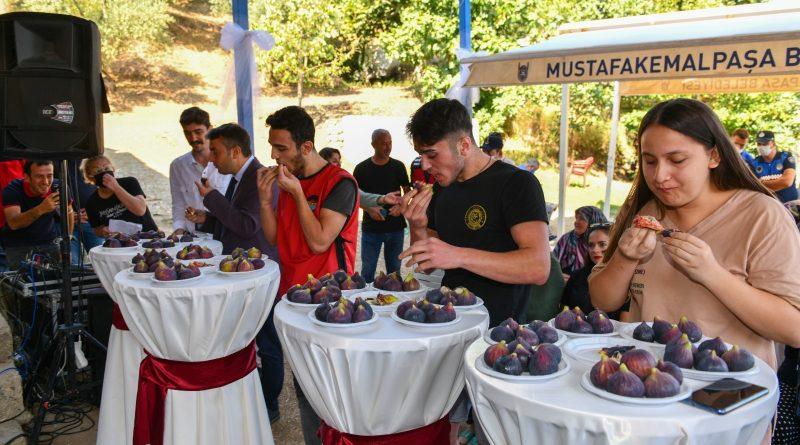 Mustafakemalpaşa Kara incir'in yeni merkezi olacak
