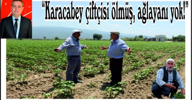 """""""Karacabey çiftçisi ölmüş, ağlayanı yok!"""""""