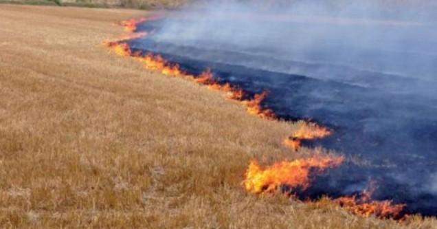 Anız yangınları ve biçerdöver uyarıları