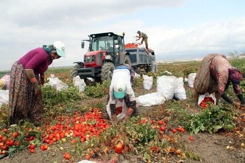 Çiftçilerden Ticaret Borsası'na tepki
