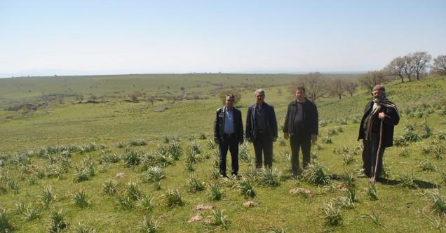 Danişmentliler ata topraklarını geri istiyor