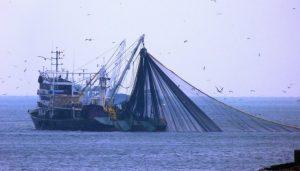 Balıkçılar, yasağın 1 Nisan'a çekilmesini istiyor!