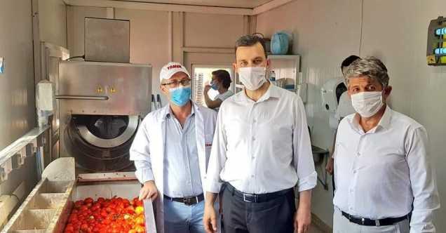 AK Parti'li Esgin'den domates üreticisine güzel haber