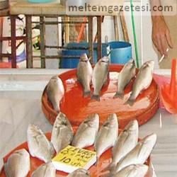 Balıkçılar umutlu