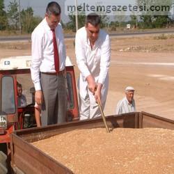 Buğday sezonu açıldı