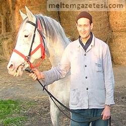 At değil darphane