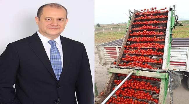 """""""DOMATES ÜRETİMİNDE   VERİMLİLİĞİ YÜZDE 40 ARTIRDIK"""""""