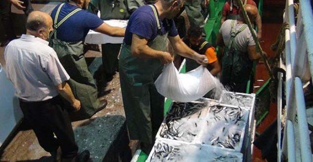 Av yasağı sona erdi, sezonun  ilk balık fiyatları belli oldu