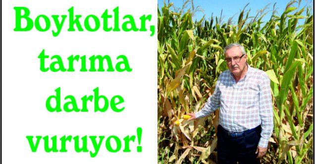 Boykotlar, tarıma darbe vuruyor!