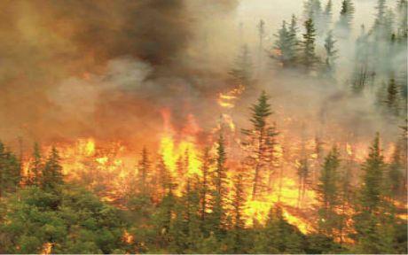 Kulakpınar'da 3 hektar alan yandı!