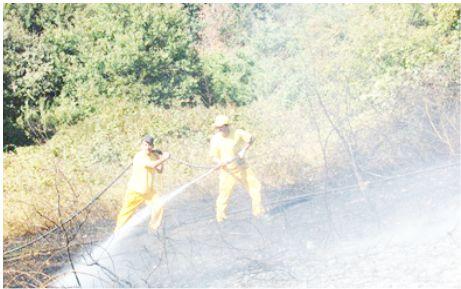 Yangın 25 dönüm araziyi kül etti